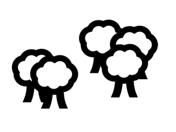 Makaton - Woods/Forest